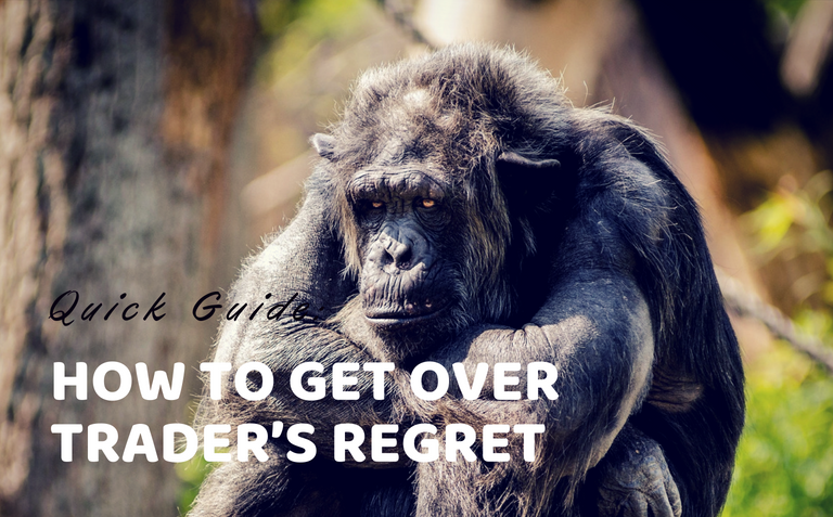 Quick Guide: How To Get Over Trader's Regret