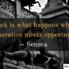 Luck is what happens when preparation meets opportunity. ~ Seneca